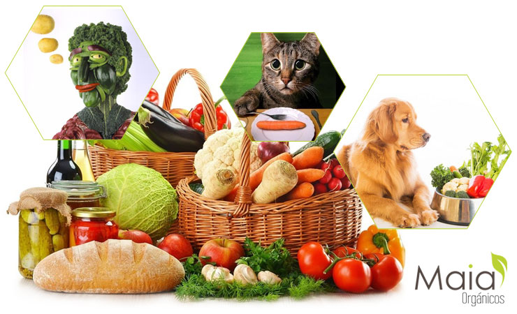 Cultura Vegetariana