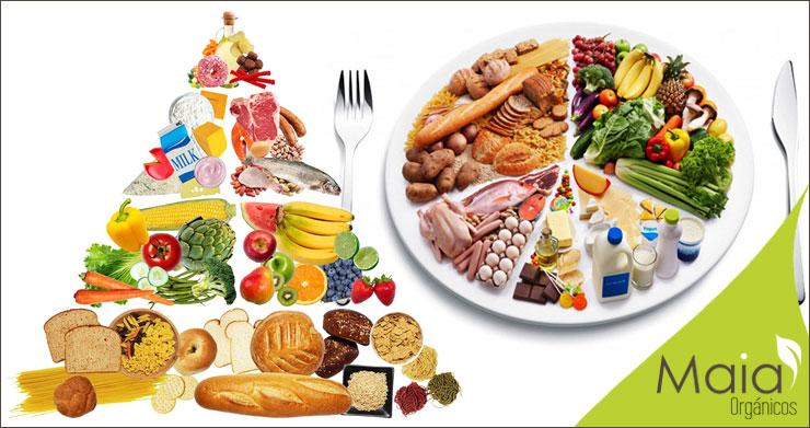 Pirámide De Alimentación Saludable Maia Orgánicos