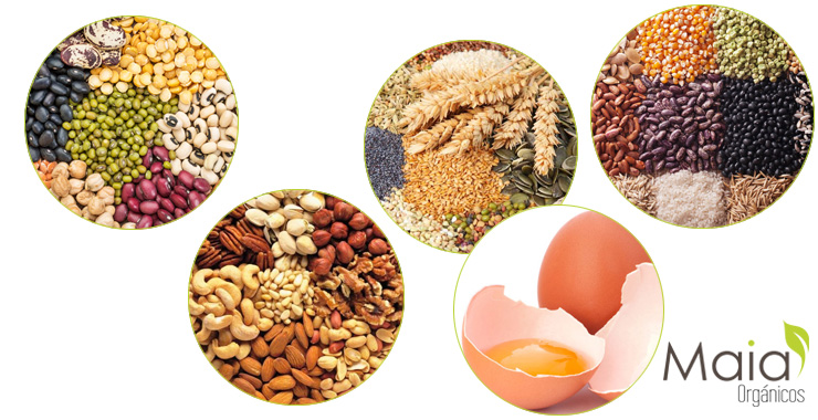 Alimentos importantes para una dieta vegetariana