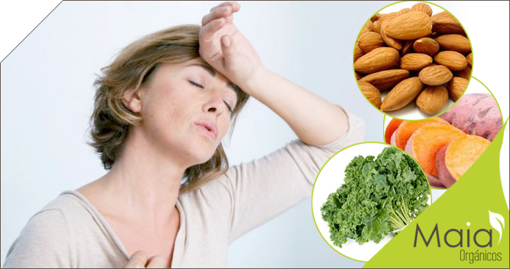 Alimentos para mejorar los síntomas de la menopausia