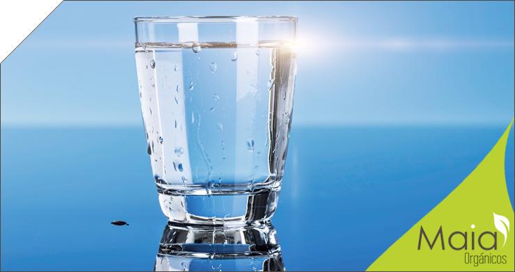 El agua en nuestra Alimentación