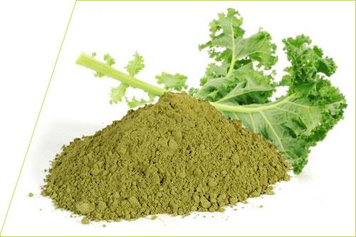 Col Rizada o Kale