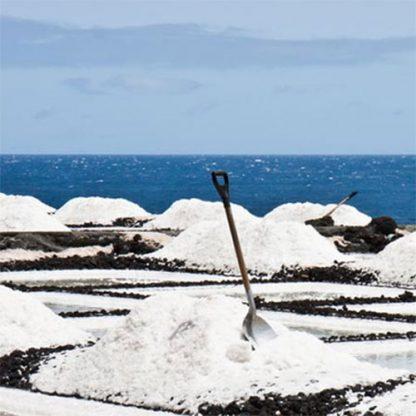 extracción de flor de sal