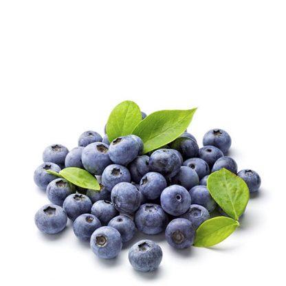 arandano azul o blueberry natural