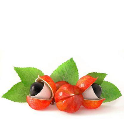guarana fruto natural